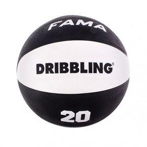 Pelota-basquet